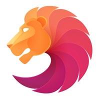 dsoftronics Company Logo