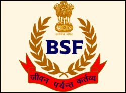 Border Security Force Company Logo
