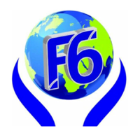 Future 6 Consultancy logo