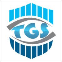 True Consultant Company Logo