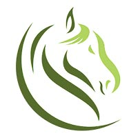 Clavius Solutions Company Logo