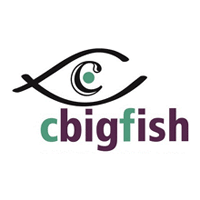 CBIGFISH E-Solutions Pvt. Ltd. logo