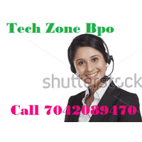 Tech Zone Bpo Company Logo