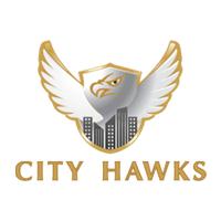 city hawks Company Logo