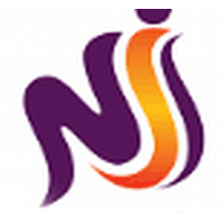 NiS Consultants Company Logo