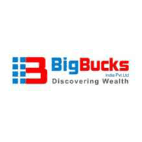 Big Bucks India Pvt Ltd logo