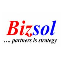 BIZSOLINDIA Company Logo