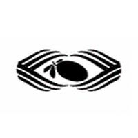 Black olive Ventures logo