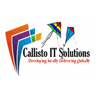Callisto IT Solutions Company Logo