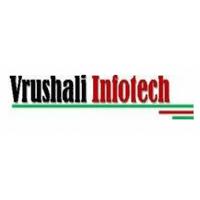 Vrushali Infotech Pvt Ltd Company Logo