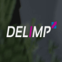 DELIMP IT Services logo
