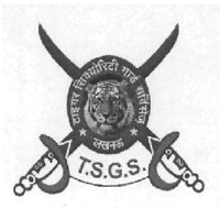 Tiger Security Gaurd services logo