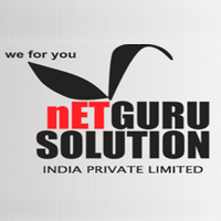 Netgurusolution India logo