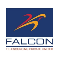 Falcon Telesourcing Pvt Ltd logo