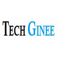 Tech Ginee Company Logo