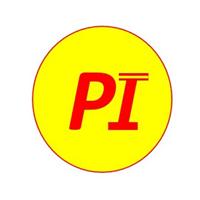 Prasuna Infra Company Logo