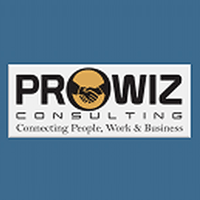 ProwizConsulting Company Logo