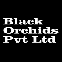Black orchids Pvt. Ltd logo