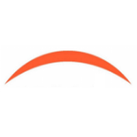 NAS SOLUTIONS Company Logo