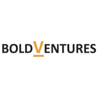Bold Venture Consultancy LLP logo