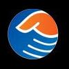 Vashpa Consultancy Company Logo