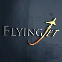 Flying Jet Stream Aviation Pvt Ltd. logo