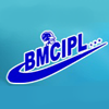 Brain Management Consultants logo