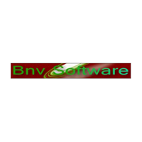 BNV Software logo