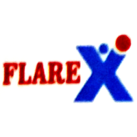 FLAREX CONSULTANCY Company Logo