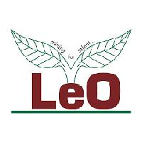 Leo Consultant Company Logo