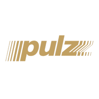 Pulz Electronic Pvt. Ltd. logo