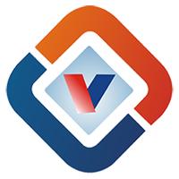 Vexil Infotech Pvt. Ltd Company Logo