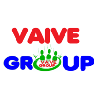 VAIVE GROUP logo