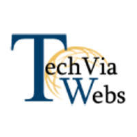 techvia webs IT software company logo