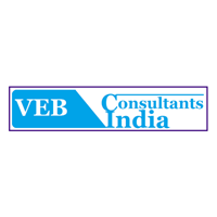 VEB India Consultants logo