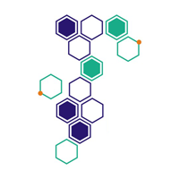 BeSure Path Lab logo