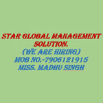 Star Global Management Solution. Logo