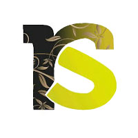 RS CONSULTANTS logo