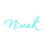 Novak Professional Solutions LLP Company Logo