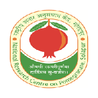 ICAR-National Research Centre on Pomegranate logo
