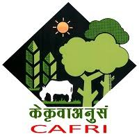 Central Agroforestry Research Institute logo