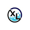 XL InfoPrise Pvt. Ltd Company Logo