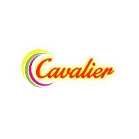 C F P L Company Logo