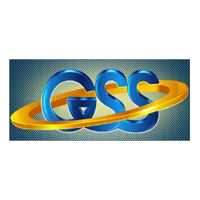 GlobeTech Solution and Services Pvt. Ltd logo