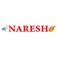 Naresh I Technologies Company Logo