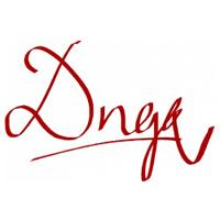 Dngk Company Logo
