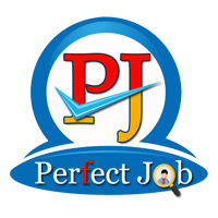 Perfect Job Placement Company Logo