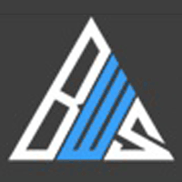 bluewebspark pvt. ltd. logo