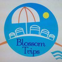 Blossom Trips Company Logo