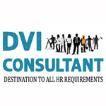 DVI Consultants Company Logo